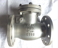 Stainless Steel Flanged Swing Check Valves