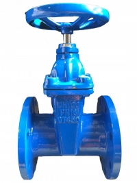 Non- rising stem gate valve